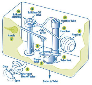 American Standard Shower Faucet Diagram Wiring Diagram For Car - Parts of a toilet cistern